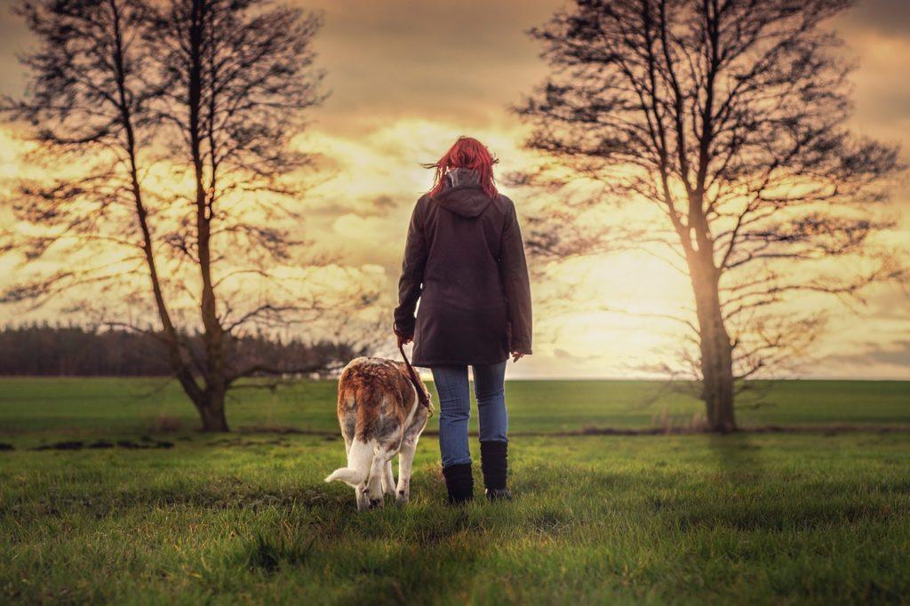 Hund an Leine mit Frau